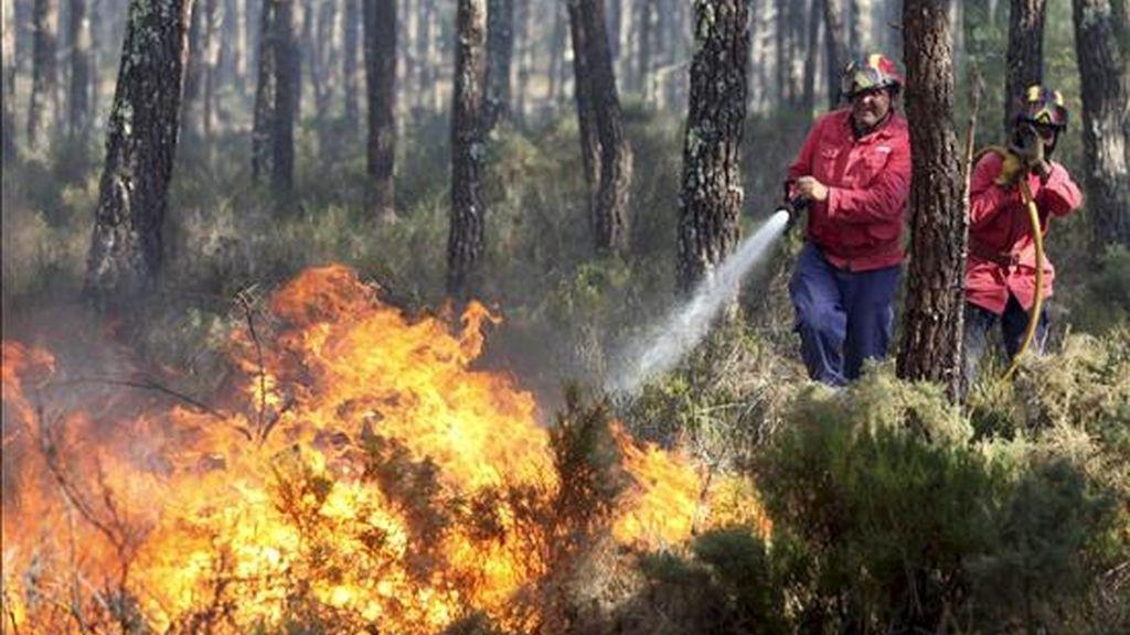 Bomberos intentando extinguir un incendio en un bosque cerca de Pataias, en Portugal, este martes. EFE