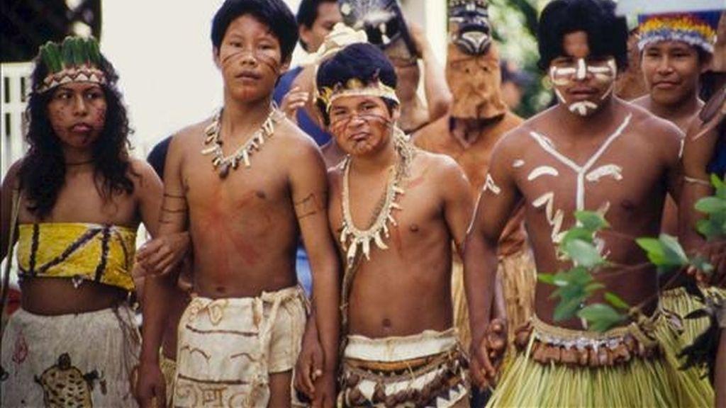Una ONG creada por científicos españoles planea adquirir más de 100.000 hectáreas en la Amazonía Central para crear una reserva natural gestionada por las comunidades indígenas que preserve una de las zonas con mayor diversidad biológica del planeta. EFE