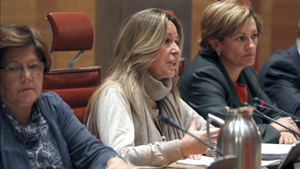 La ministra de Asuntos Exteriores, Trinidad Jiménez (c), durante su comparecencia esta tarde ante la Comisión de Exteriores del Senado para informar de las líneas generales de la política de su ministerio. EFE