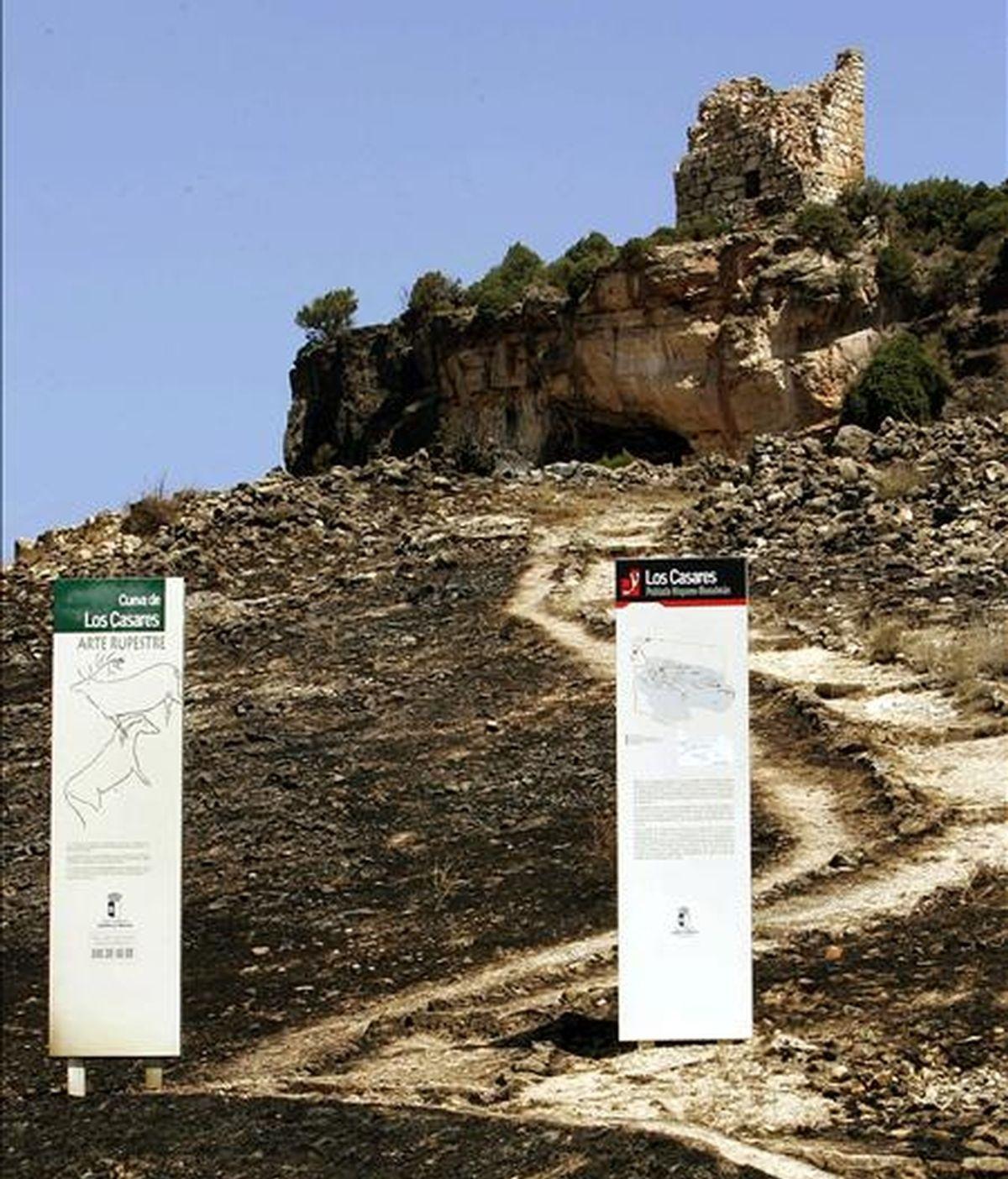 Paraje de pinares conocido como la Cueva de los Casares, en el término municipal de Riba de Saelices, donde en julio de 2005 se originó el incendio presumiblemente a causa de una hoguera prendida por unos excursionistas, que se cobró la vida de once personas. EFE/Archivo
