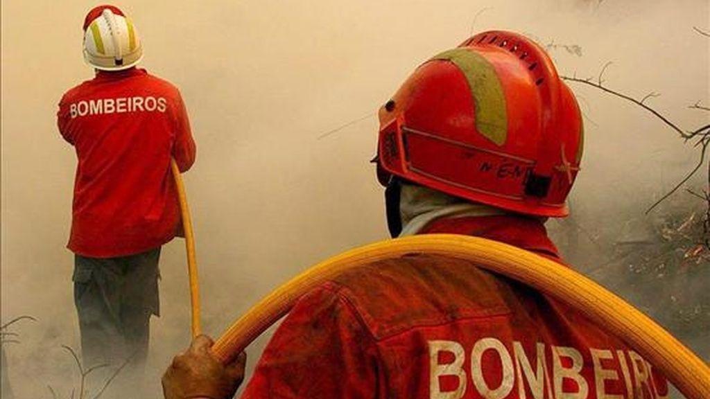 """El comandante de los servicios de bomberos de la ciudad Will Knight dijo al diario """"The Chicago Tribune"""", que las llamas afectan principalmente al techo y no se han extendido al interior del templo. EFE/Archivo"""