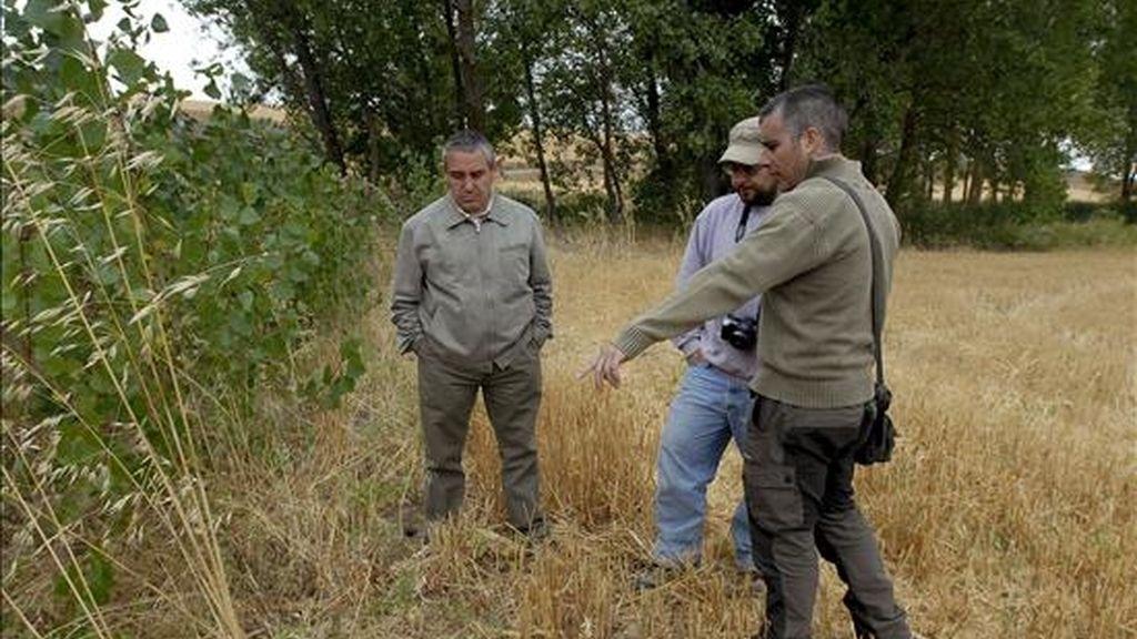 En la imagen, los miembros de la Asociación para la Recuperación de la Memoria Histórica (ARMH), Santiago Macías (d), Marco González (c), y José Cabañas, conversan en los alrededores de la localidad de Albires (León), donde supuestamente existe una fosa con 11 cadáveres. EFE/Archivo
