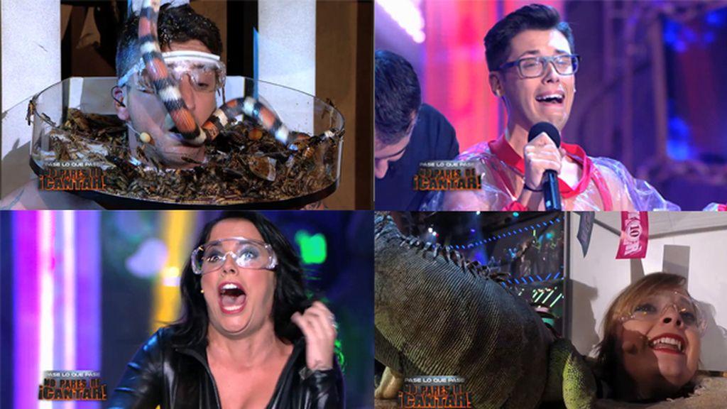 'Killer Karaoke' espera al campeón de campeones en su gran final