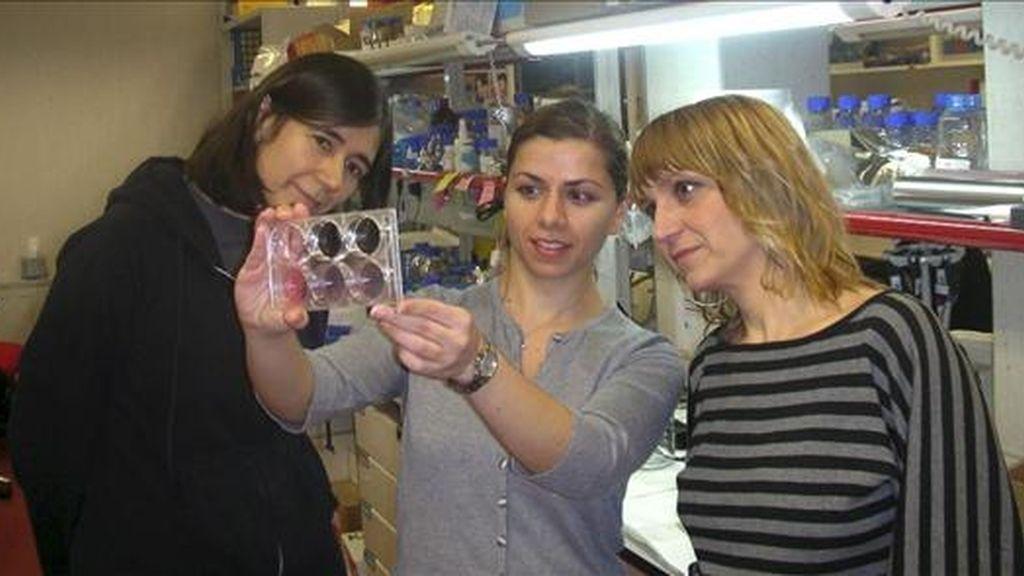 De izda a dcha. María Blasco, Katerina Strati y Rosa Marión, científicas del Centro Nacional de Investigaciones Oncológicas, en su laboratorio. EFE