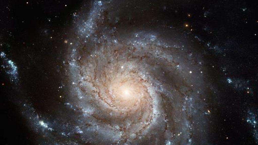 La NASA celebró hoy el Año de la Astronomía con la distribución de una composición fotográfica de una galaxia captada por sus tres observatorios en el espacio. EFE