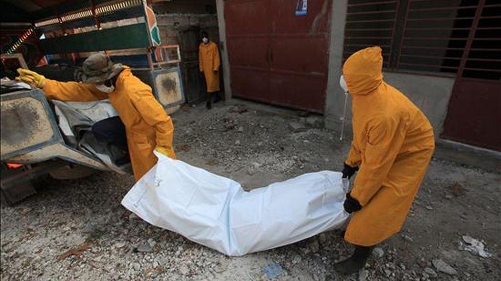 Miembros del personal de salud pública de Haití trasladan el cadavér de una víctima de cólera. EFE/Archivo