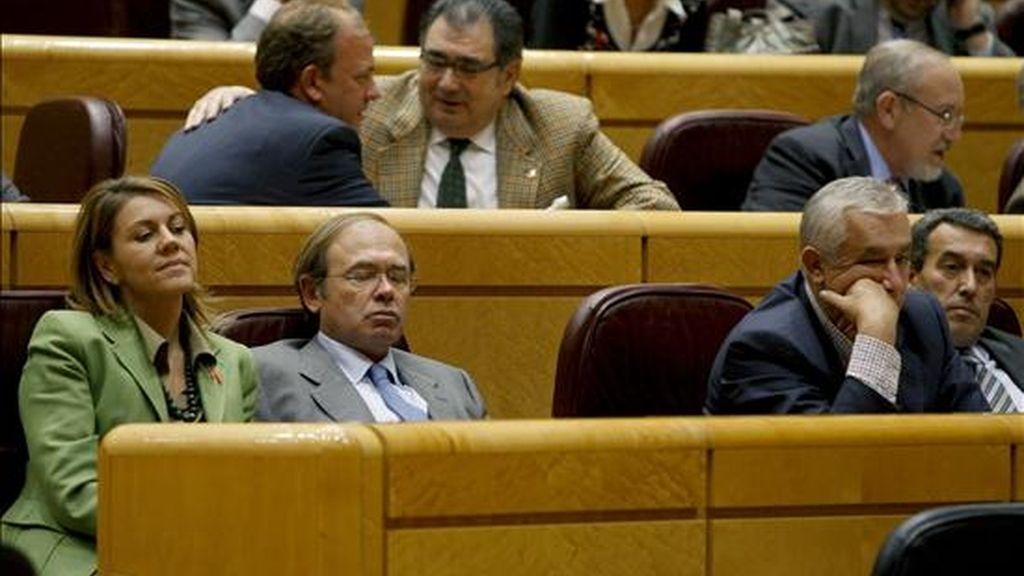 La secretaria general del Partido Popular, María Dolores de Cospedal; el portavoz del PP en el Senado, Pío García-Escudero, y el vicesecretario del PP, Javier Arenas (i-d), durante las votaciones a los candidatos a ingresar en el Tribunal Constitucional, celebradas esta tarde en el Pleno del Senado. EFE