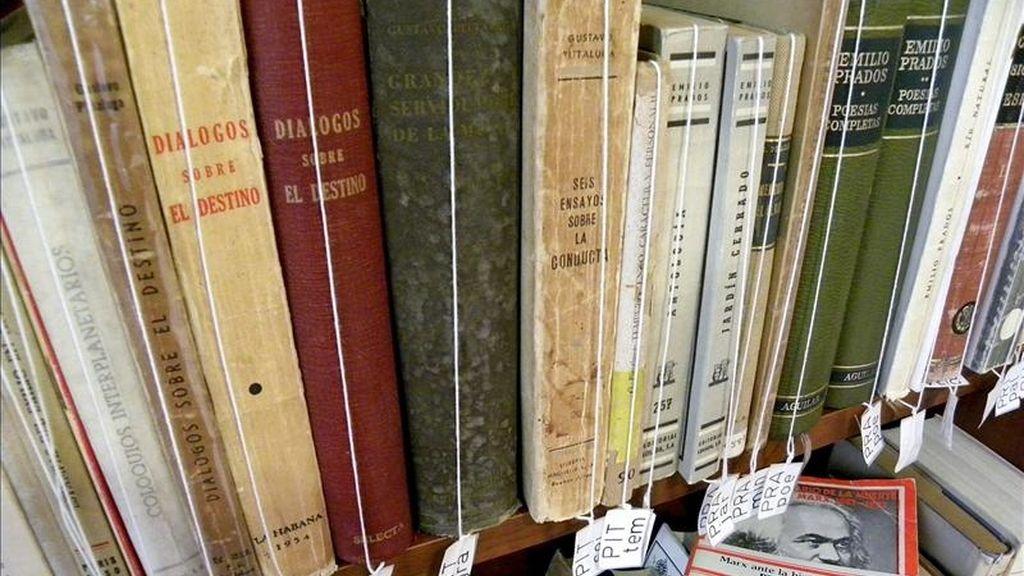 El fondo bibliográfico del que se nutre el Centro de Estudios sobre el Exilio, ubicado en Vélez-Málaga (Málaga), supera los 2.000 ejemplares entre libros y revistas donde se aborda este fenómeno como una categoría cultural y muchos de los cuales fueron traídos desde Sudamérica. EFE