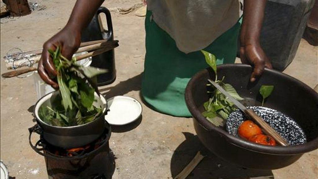 África podría ser autosuficiente en la producción de alimentos dentro de una generación, según un estudio del profesor Calestous Juma, de la Universidad de Harvard, presentado hoy en la Cumbre de Jefes de Estado de la Comunidad de África Oriental sobre Cambio Climático y Seguridad Alimentaria. EFE/Archivo