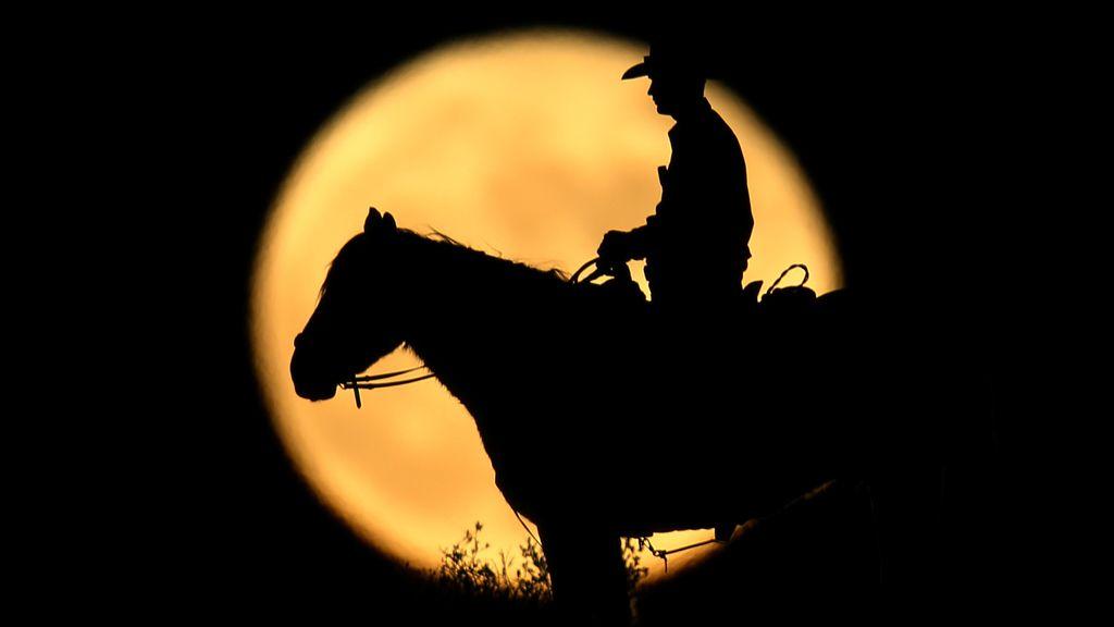 Hombre a caballo con luna al fondo