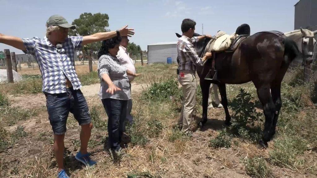 La abuela que monta a caballo: Isabel, 80 años al galope marismeño