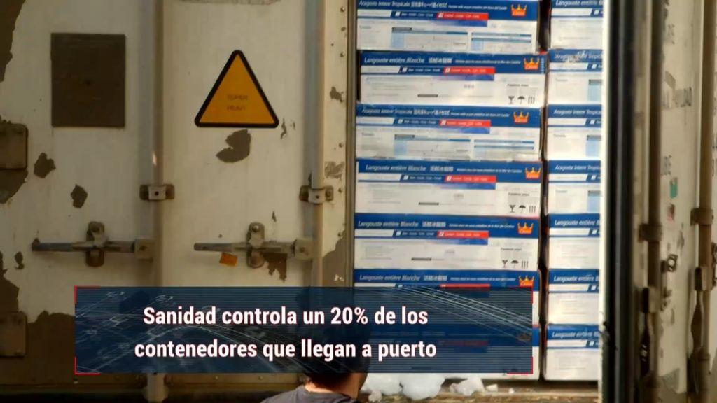 Así llega el panga al puerto de Valencia