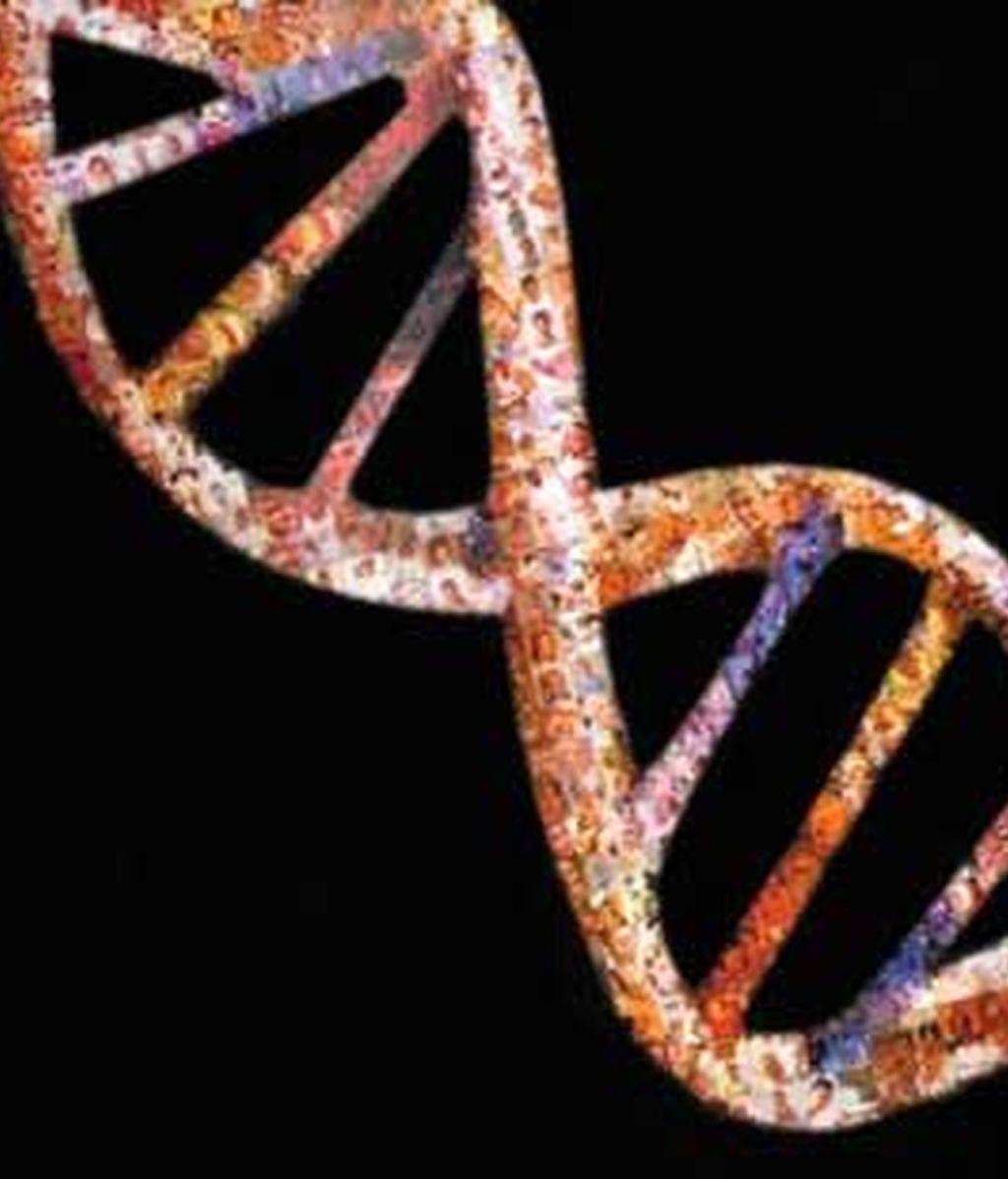 La mayor empresa biotecnológica del mundo asegura que dentro de diez años cada bebé tendrá su propio mapa genético.