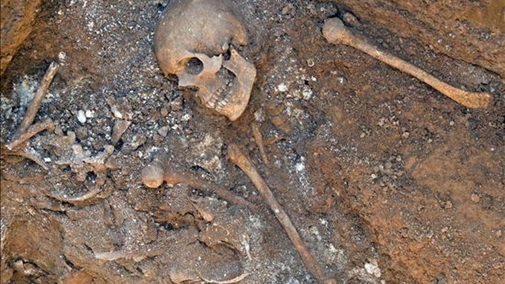 Los esqueletos encontrados por unos obreros que trabajaban en las obras de saneamiento del alcantarillado en el barrio de la Fuensanta de Valencia podrían corresponder a restos procedentes de una epidemia de cólera del año 1800 o incluso a una época anterior. EFE