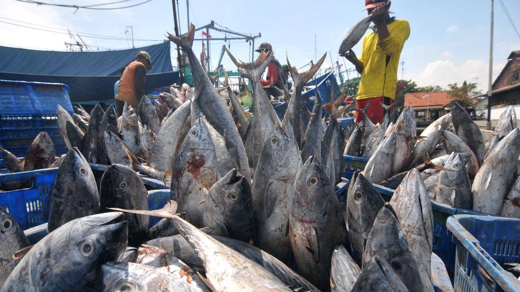 La pesca del atún