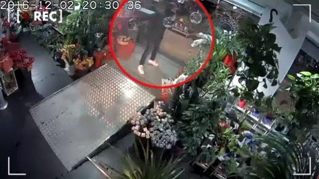 Una floristería de Tarragona, desesperada por un atacante misterioso