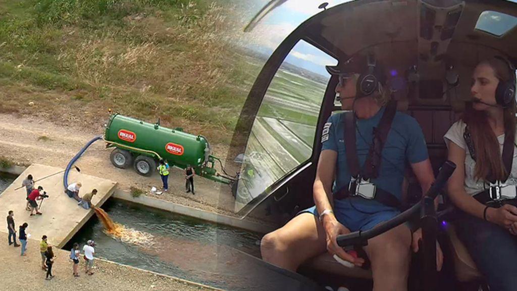 'Volando Voy' pone su grano de arena para que el Delta del Ebro no desaparezca