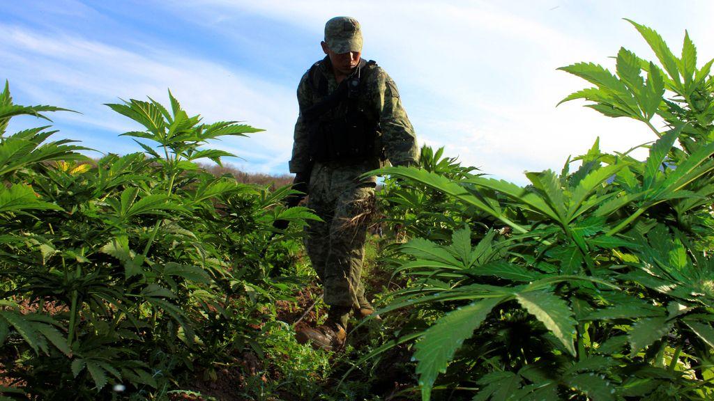Contra la droga en México