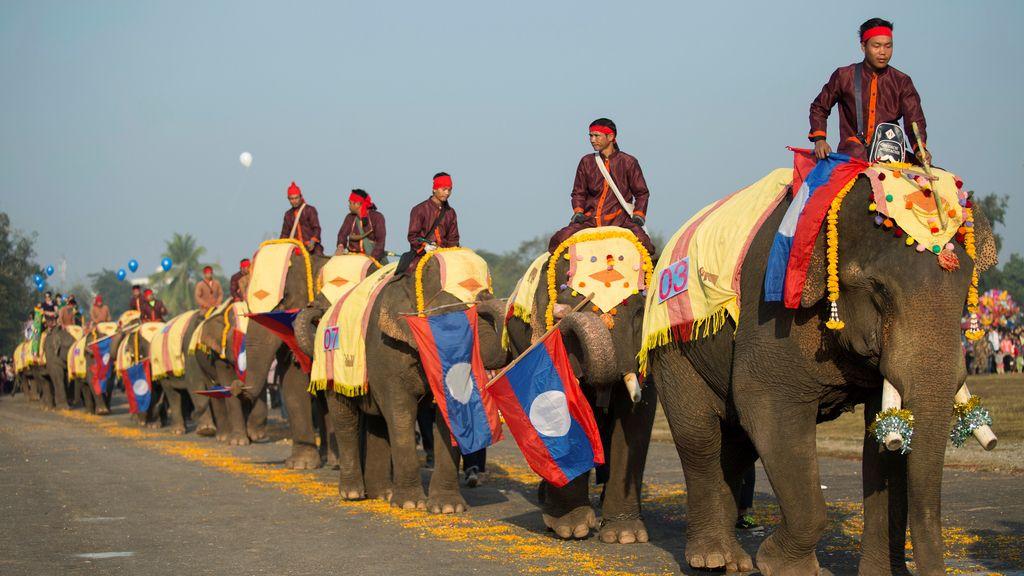 'Festival del Elefante'