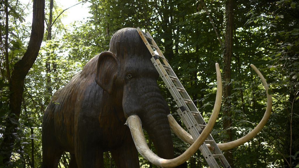 La ciencia podría haber descubierto cómo resucitar al mamut lanudo