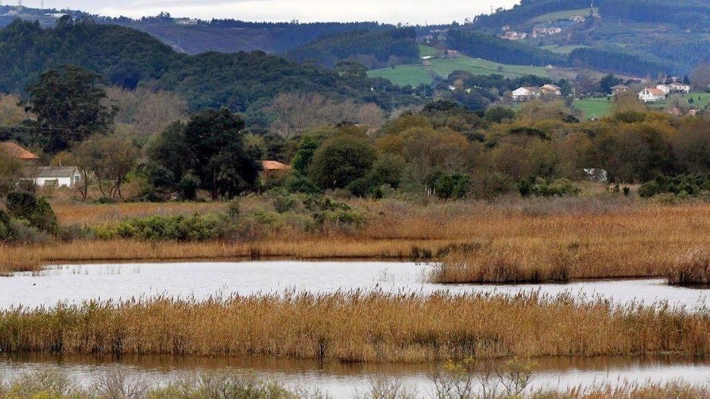 Parque Natural de las Marismas de Santoña, Victoria y Joyel (Santander)