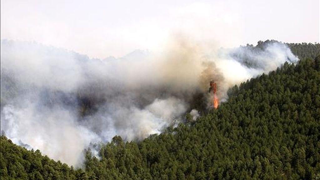 El director regional de la Corporación Nacional Forestal (Conaf), Julio Figueroa, dijo que en las tareas de combate trabajan decenas de voluntarios de esa entidad, de bomberos, carabineros y miembros de las Fuerzas Armadas. EFE/Archivo