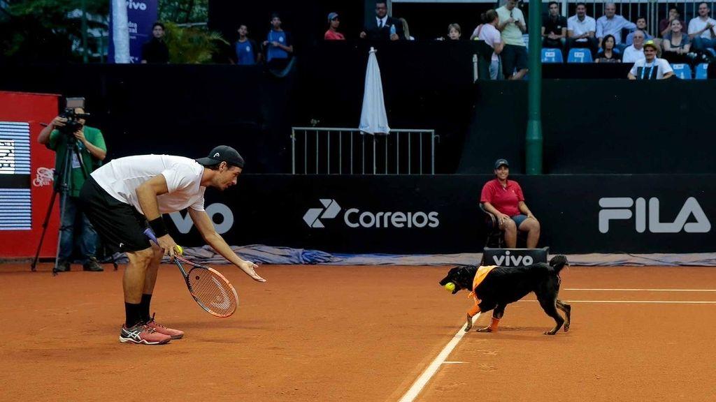 Tenis, Abierto de Brasil