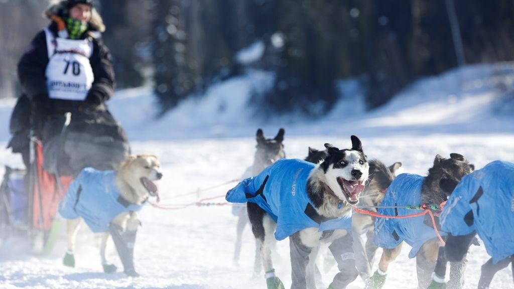 Carreras en la nieve