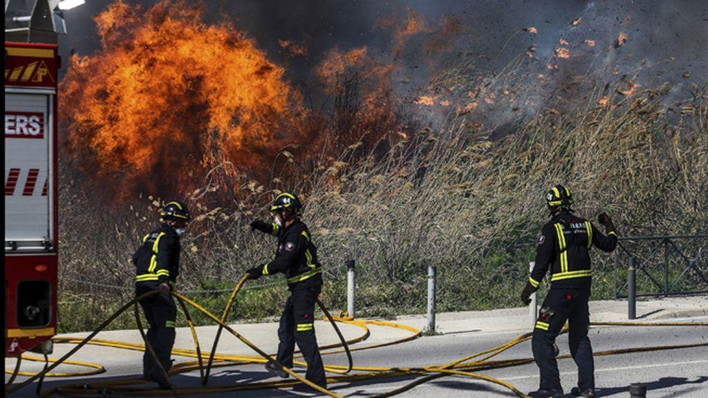 "El incendio de Ses Feixes de Ibiza está ""controlado"" y pasa a nivel 1"