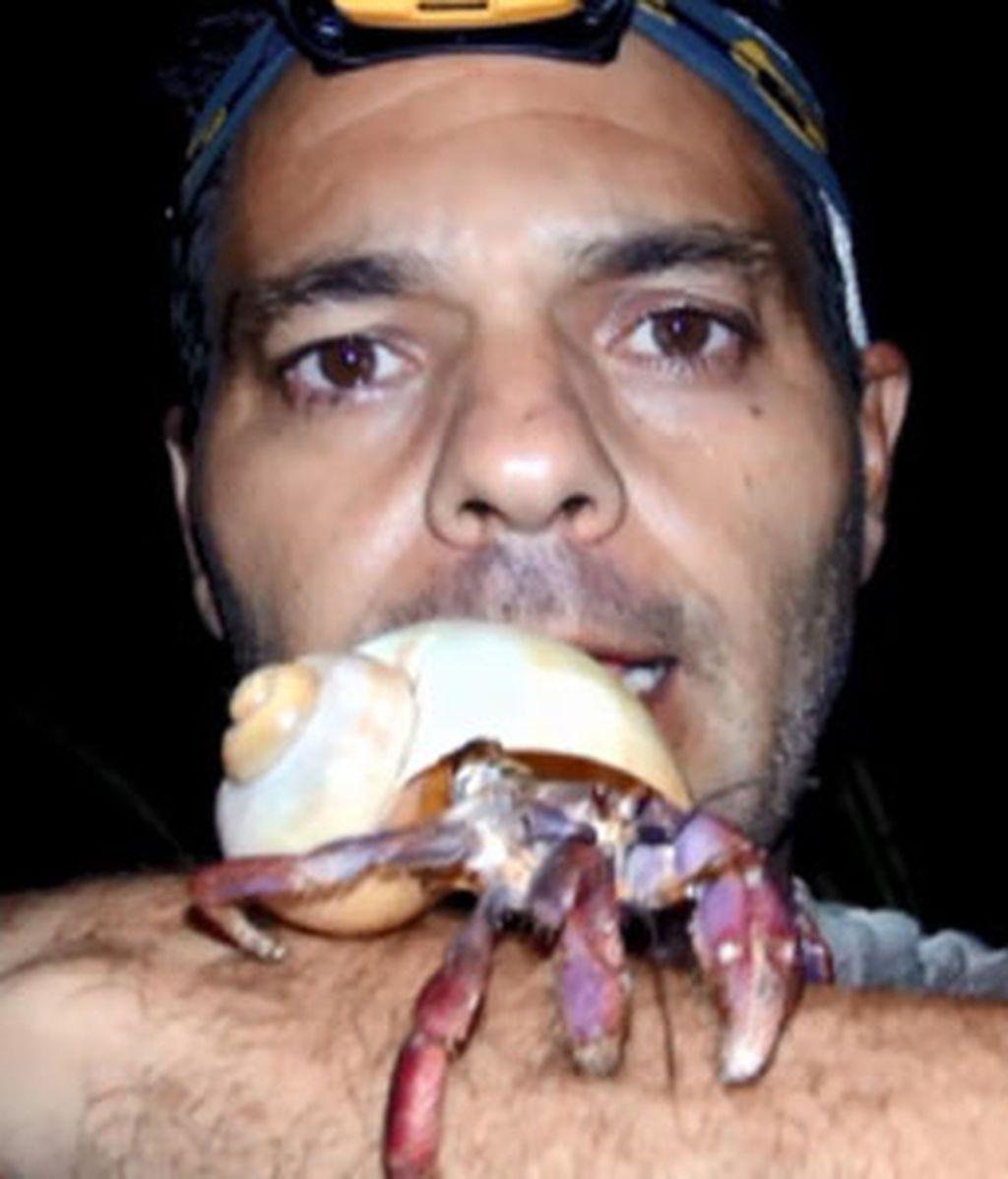 Frank y los cangrejos