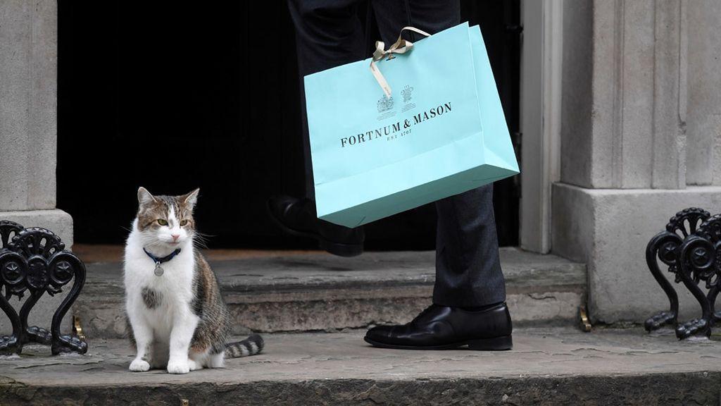 Larry, el gato de Downing Street