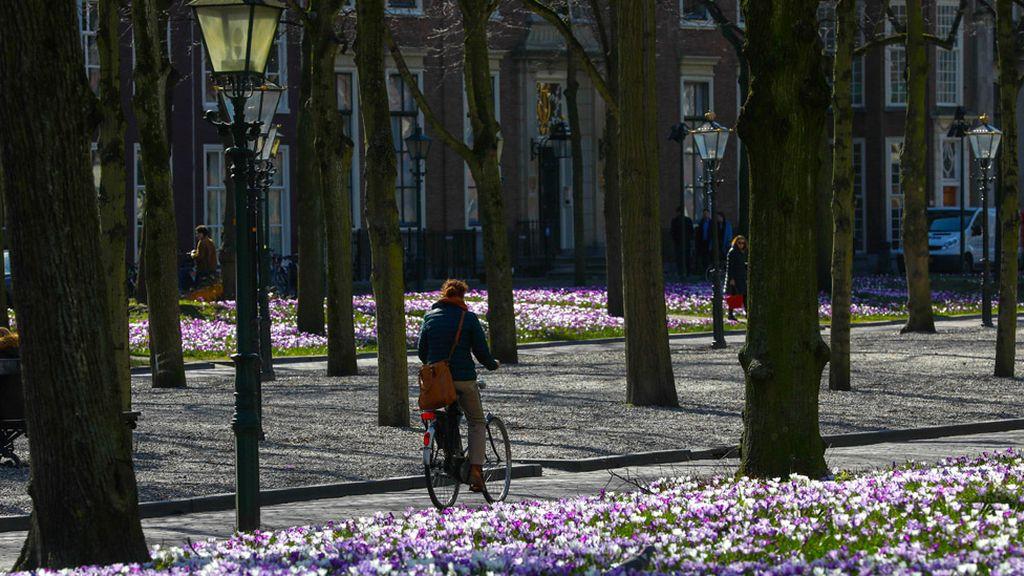 Un paseo por La Haya