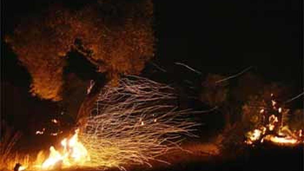 Olivos quemándose durasnte el incendio forestal en Horta de Sant Joan, Tarragona