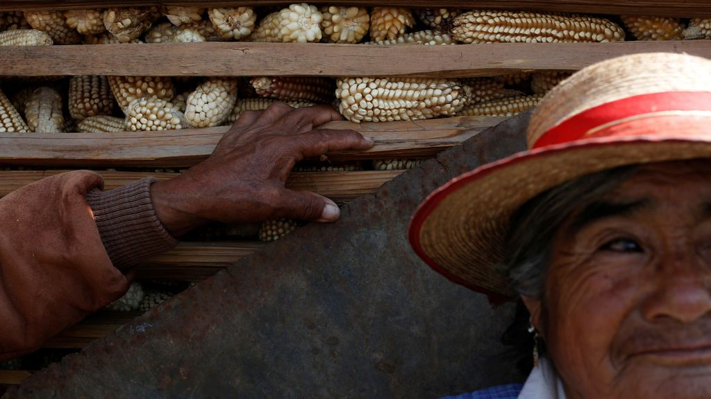 Una agricultura mexicana junto a maíz