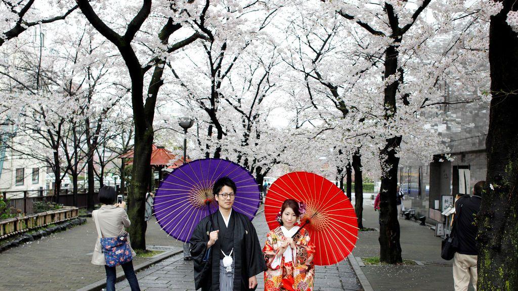 Una pareja paseando junto a los cerezos en flor en Kyoto