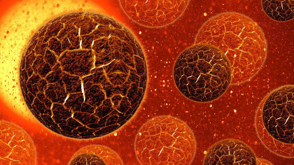 Las bacterias se alimentan por turnos en situaciones de escasez