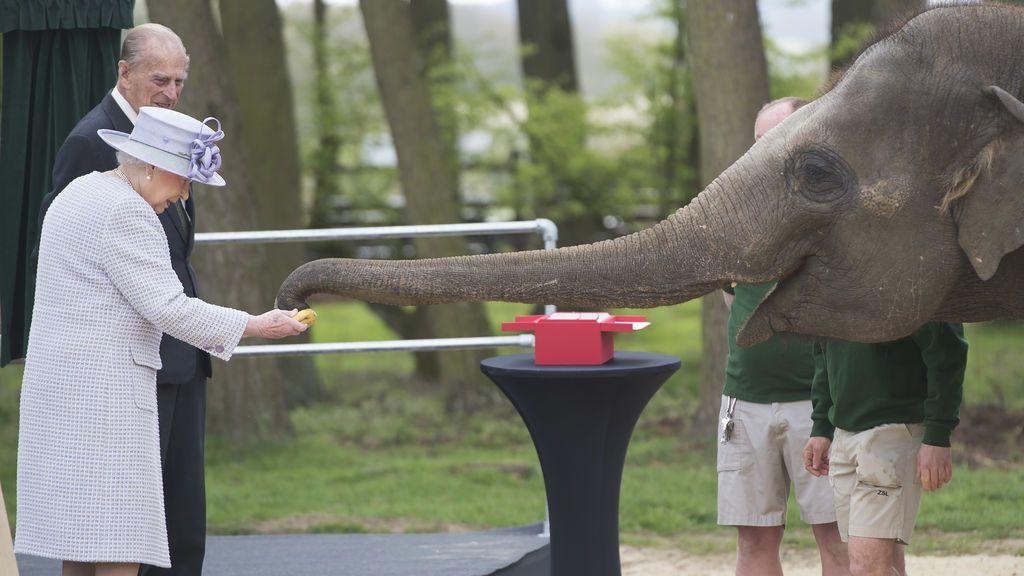 Visita de la Reina Isabel de Reino Unido al Zoo de Whipsnade