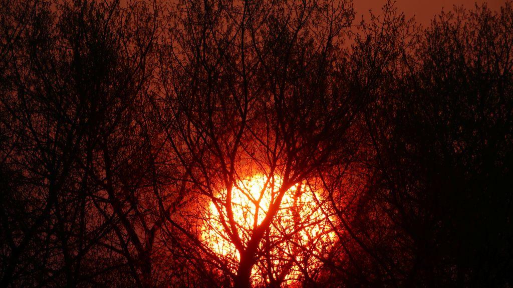 El Sol de Bielorusia