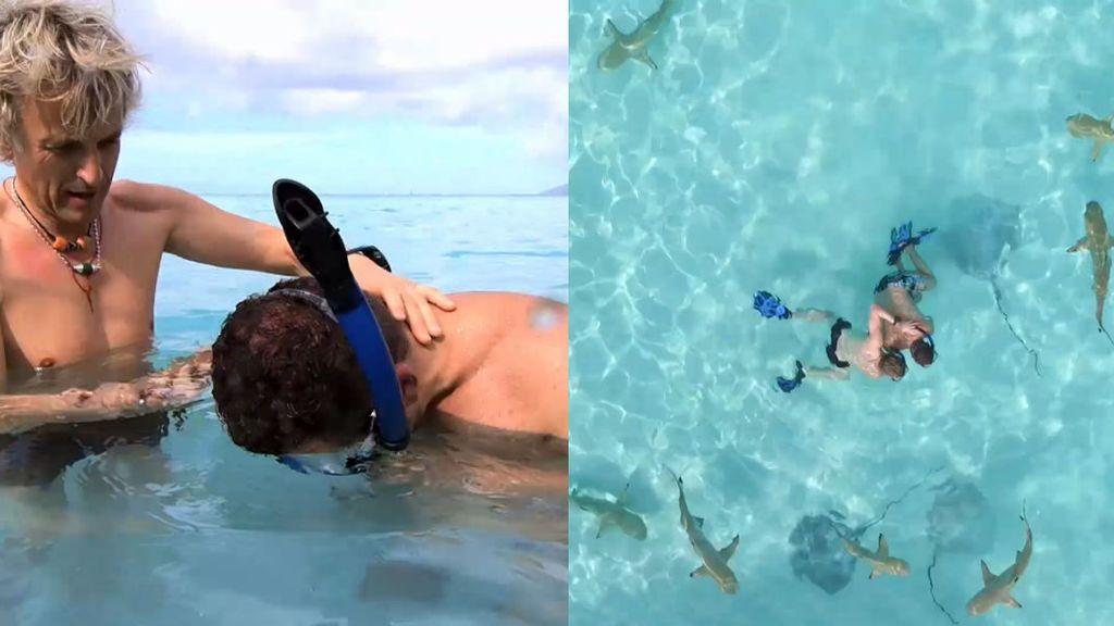"""Jorge Javier Vázquez, snorkel entre tiburones: """"Me cago en la p***"""""""