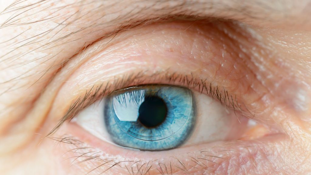 ¿De qué color son tus ojos? Podrían decir mucho sobre tu salud
