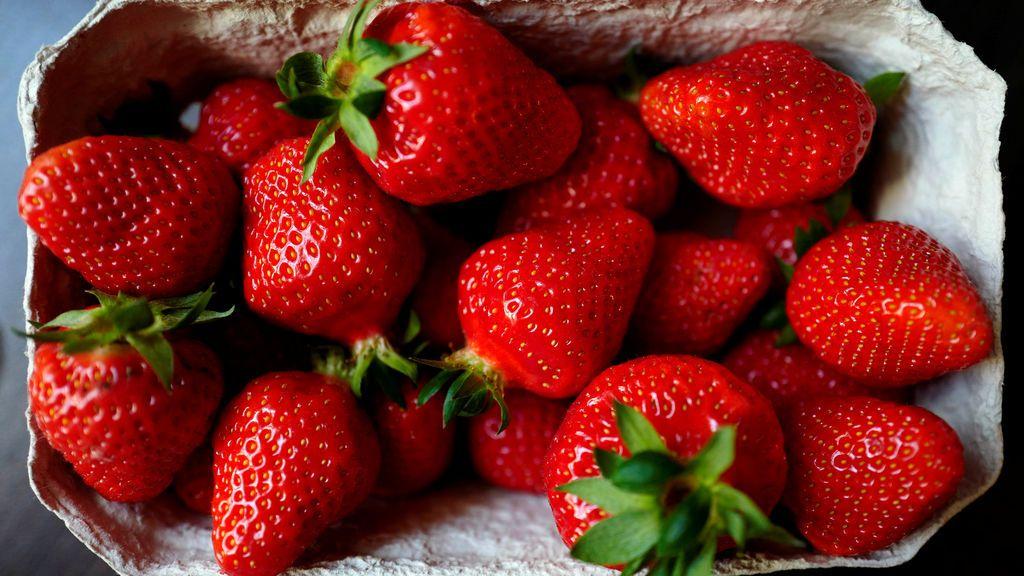 Fresas en Alemania