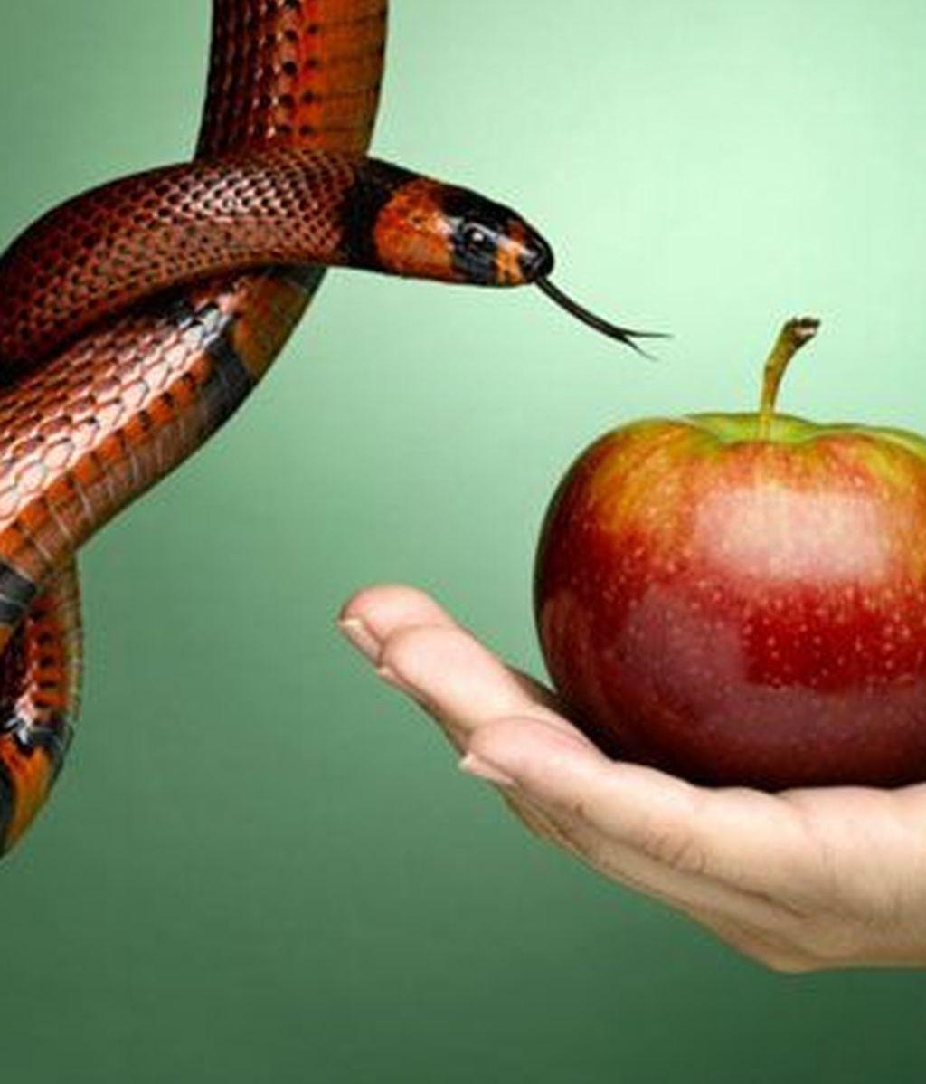Pecados, serpiente, perdóname señor