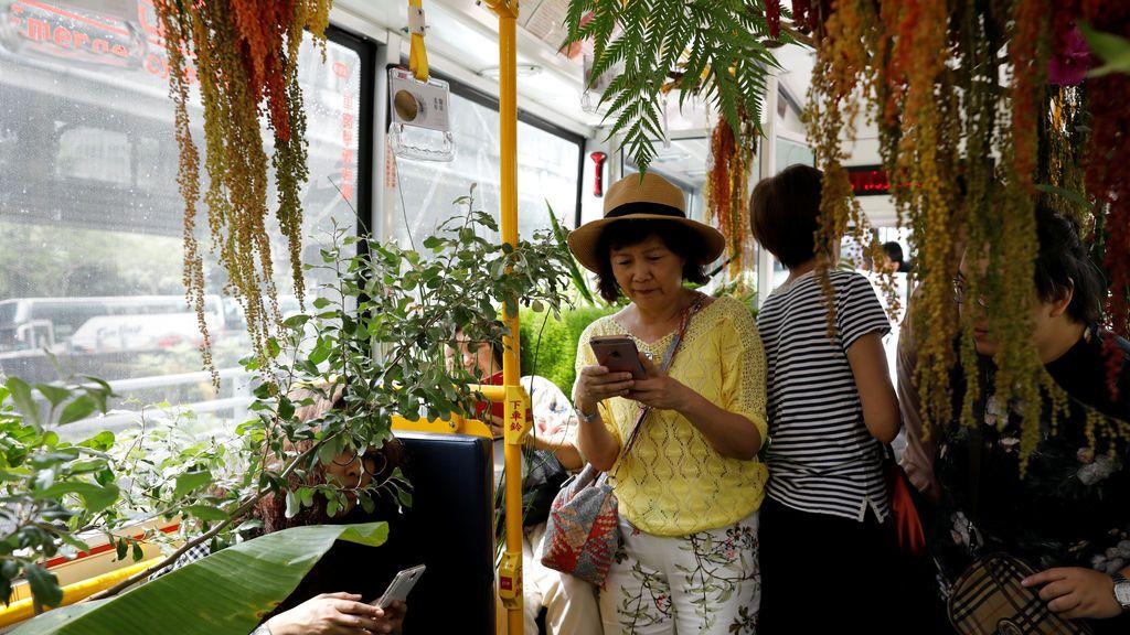 Pasajeros en un autobús lleno de vegetación