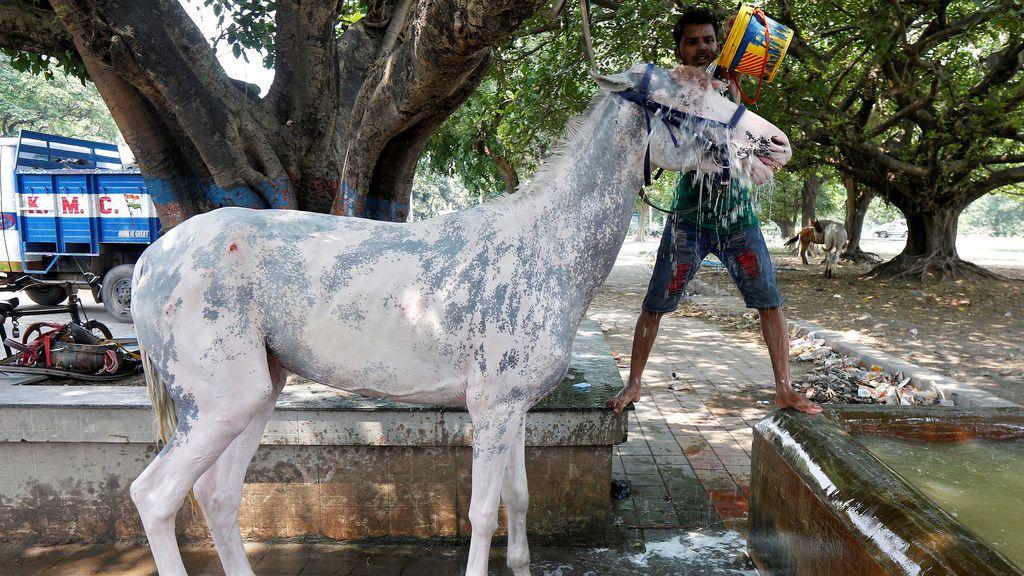 Los efectos del calor en India