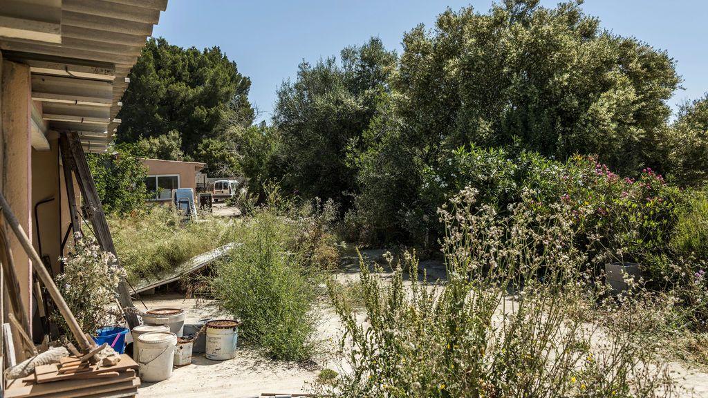 Una pareja de ancianos hallados muerta y devorada por sus perros en Mallorca