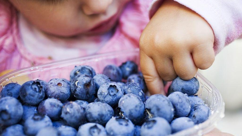 Estos son los seis alimentos que no debes dar a tu hijo si tiene menos de dos años