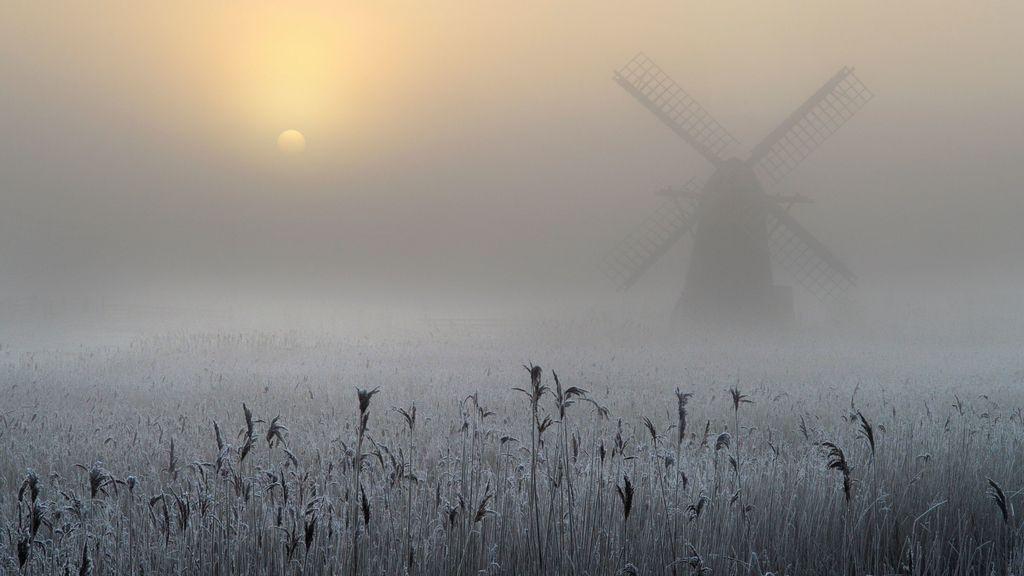 Tercer premio: Niebla congelada y escarcha en Reino Unido
