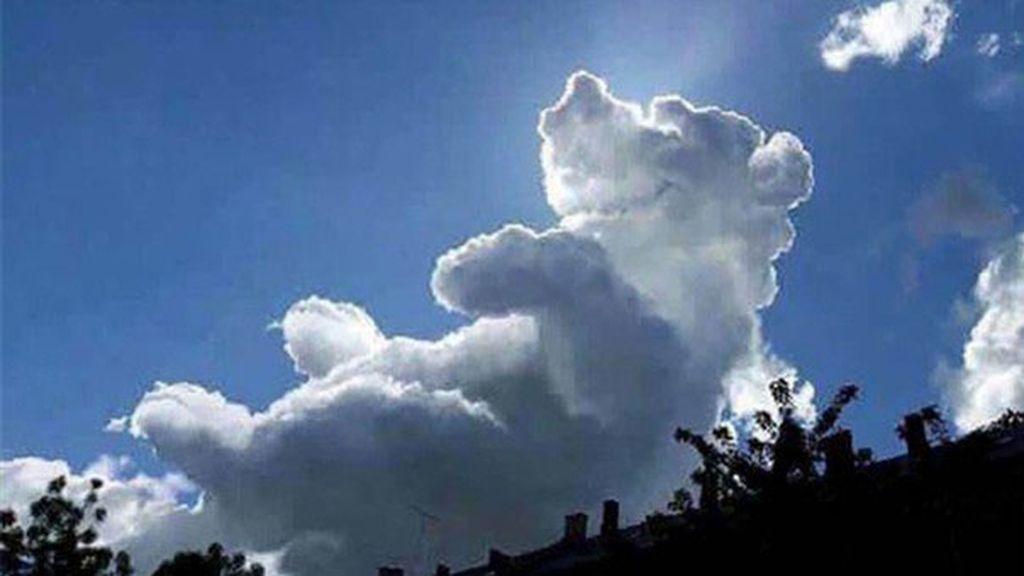 ¡Un osito de verdad? Esas nubes tan nítidas no pueden ser casualidad...