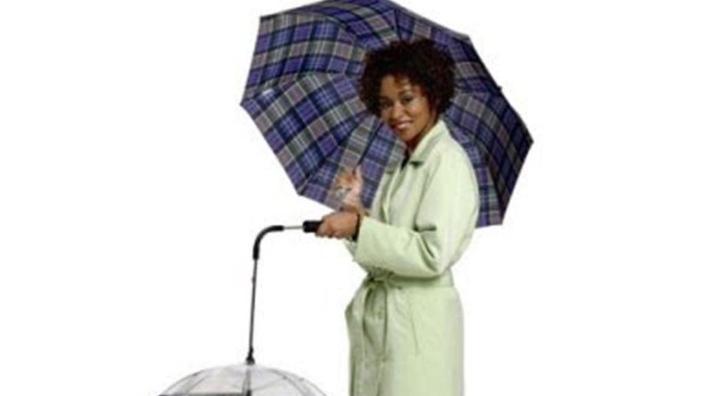 Paraguas perro