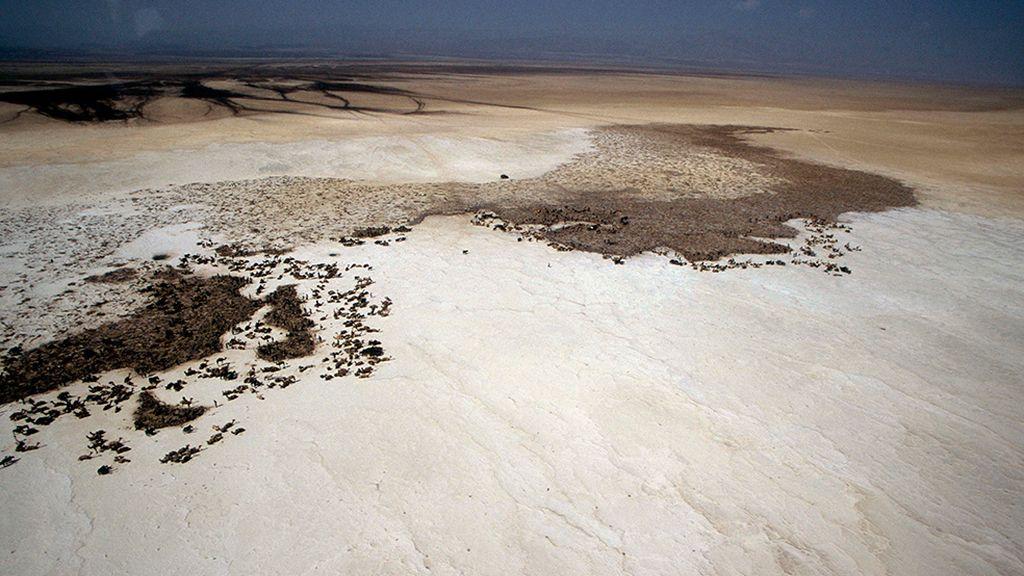Un pueblo sobrevive con sal en el desierto